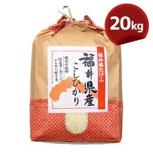 こしひかり(JA越前たけふ)20kg