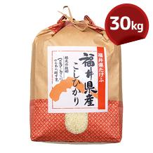 こしひかり(JA越前たけふ)30kg
