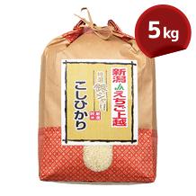こしひかり(JAえちご上越) 5kg