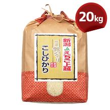 こしひかり(JAえちご上越) 20kg