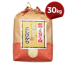 こしひかり(JAえちご上越) 30kg